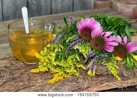 Cup Of Herbal Tea From Solidago And Echinacea.