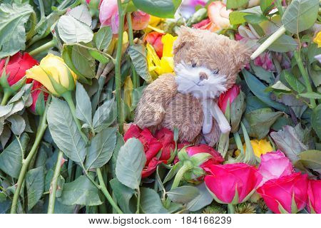 STOCKHOLM SWEDEN - APR 17 2017: Flowers Teddy bear from people paying respect to the victims in the terror attack in Stockholm April 07 2017. April 17 2017 in Stockholm Sweden