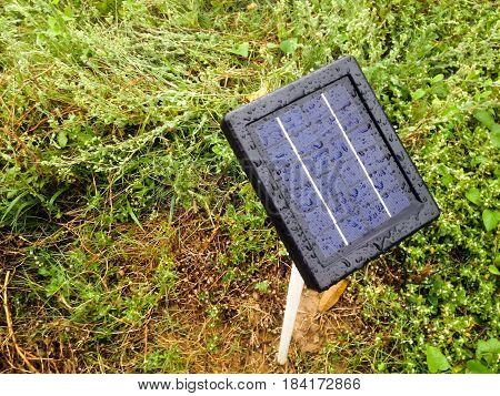 mini solar cells head up to sun light after rainy