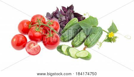 One cut tomato and branch of the tomatoes one sliced and several whole cucumbers creeping cucumber stem with the leaves and flower against of the purple basil on a light background