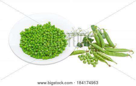 Blanched green peas in white dish fresh green peas shelled from the pods several pods and pea branch with leaves and tendrils on a light background