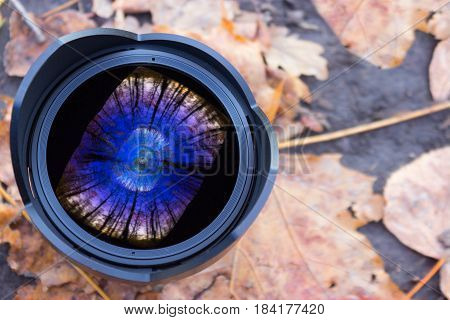 digital camera fisheye lens. autumn leave background