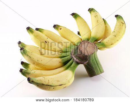 close up bunch of yellow ripe banana (Lebmuernang banana) on white background, tropical fruits sweet taste and energizing
