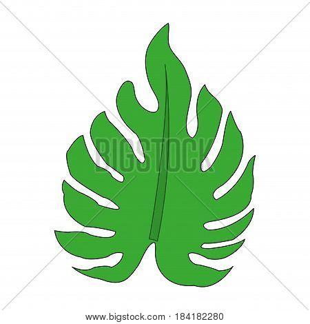 color image irregular green leaf vector illustration