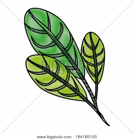 color blurred stripe image green leaves with ramifications vector illustration
