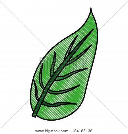 color blurred stripe image green leaf with ramifications vector illustration