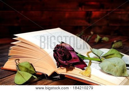 A red rose wilted rose through the pages of an old book yellowed by time on an old wooden table.