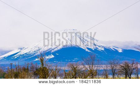 Fuji mount with snow on top in spring time at Yamanaka lake