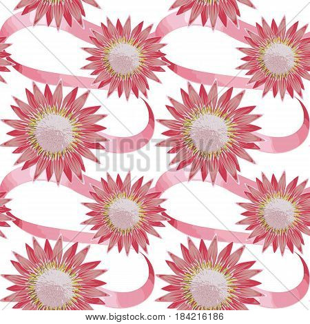 Seamless pattern of tropical pink flower protea and ribbons. Tropic floral wallpaper on white background. Romantic textile print.