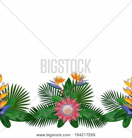 Tropical seamless border with flowers, leaves and butterfly. Tropic floral composition with place for text on white background. Jungle textile print with protea.