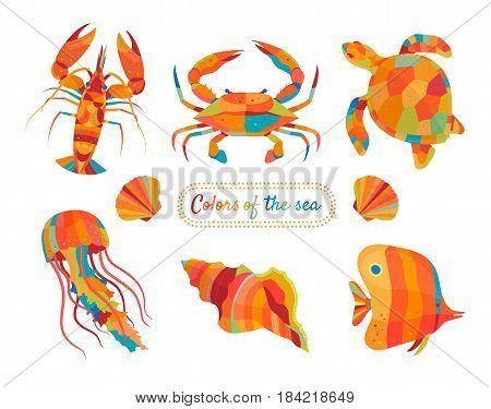 Colorful marines and aquatics Vector info-graphic elements.