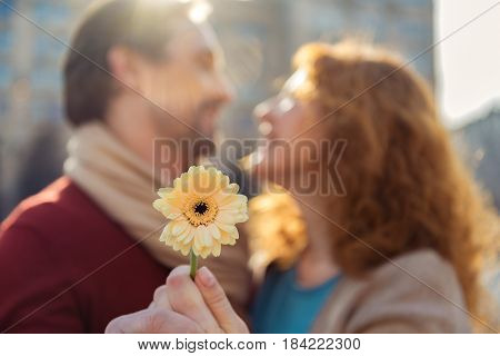 Romantic middle-aged loving couple are standing and hugging outdoors. They are smiling. Focus on gerbera flower in female hand