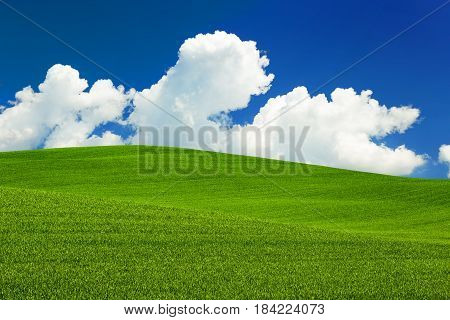 white clouds and blue sky over a green meadow in the countryside