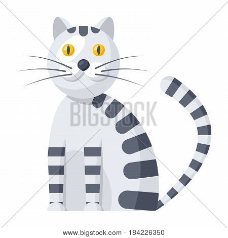 Zoology concept with cute cat, vector illustration in flat style