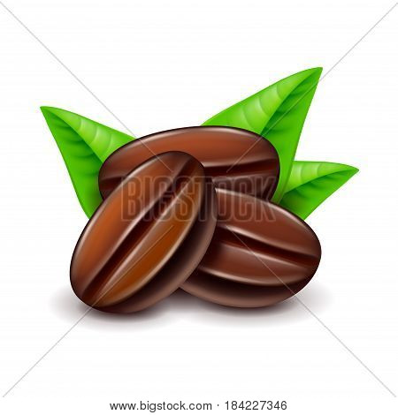 Coffee beans isolated on white photo-realistic vector illustration