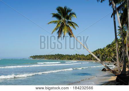 Caribbean Beach Of Playa Bonita At Las Terrenas