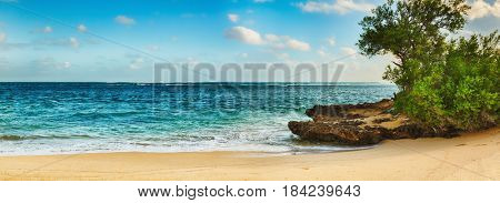 Sandy tropical beach at sunny day. Mauritius. Panorama