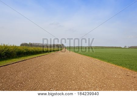 English Landscape In Springtime