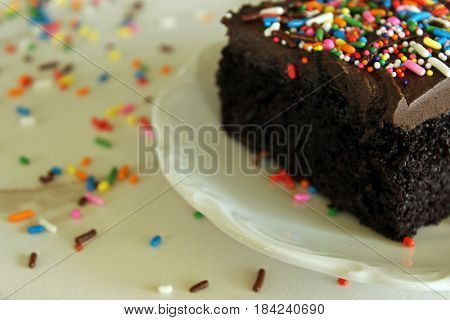 Close up of moist, delicious chocolate cake with sprinkles.