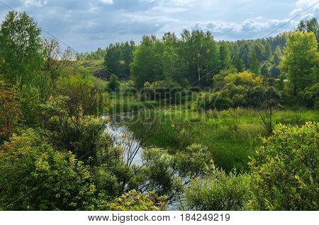 Summer mountain forest landscape -view of forest in the mountains in summer day. Summer mountain landscape of Ustinovskii Canyon in Southern Urals Russia. Mixed forest in the mountains in summer. Aerial view of summer forest trees in the mountain canyon