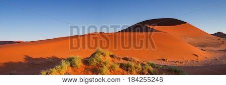 Sossusvlei dune in the early morning light Namibia Africa