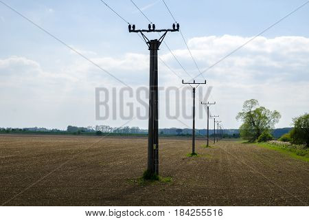 A view of a row of columns of a power line column in a landscape with trees with a field under a blue sky