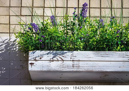 Wooden Box With Daisies On A Stone Wall