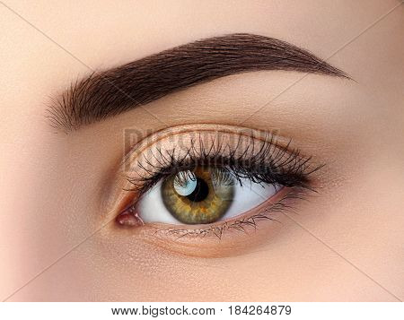 Close Up View Of Beautiful Brown Female Eye