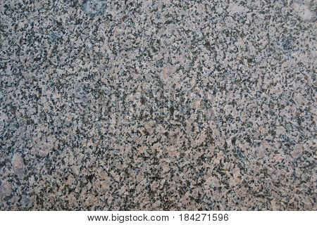 Photo of a homogeneous texture of polished white granite