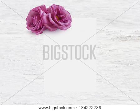 Styled stock photo. Feminine digital product mockup with rose flowers, blank list of paper and shabby white background, flat lay, top view. Picture for blog or social media.
