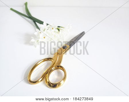 Styled feminine stock photo, golden scissors and bouquet of daffodil flowers on white background.