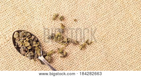 Dry leaves of green tea and teaspoon. A light background from sacking a close up selective focus copyspace right. Grade milk oolong tea