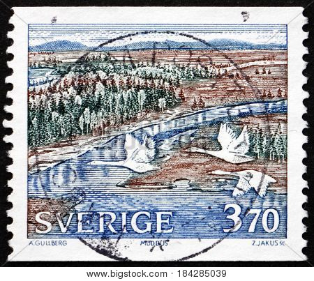 SWEDEN - CIRCA 1990: a stamp printed in Sweden shows Three Whooper Swans over Wetlands Muddus Park circa 1990
