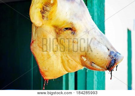 Pig Head Hanging in Shop Window - Trinidad, Cuba