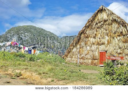Yellow Straw Hut - Vinales Valley, Cuba: Yellow Straw Hut with colorful clothes hanging on washing line, surrounded by green hills in Vinales Valley, Cuba.
