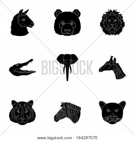 A set of icons of wild animals. Predatory and peaceful wild animals.Realistic animal icon in set collection on black style vector symbol stock web illustration.