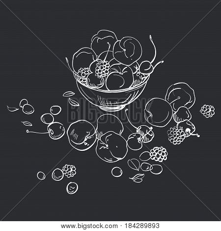 Hand draw illustarion of fresh fruit in a bowl. Peaches and cherries