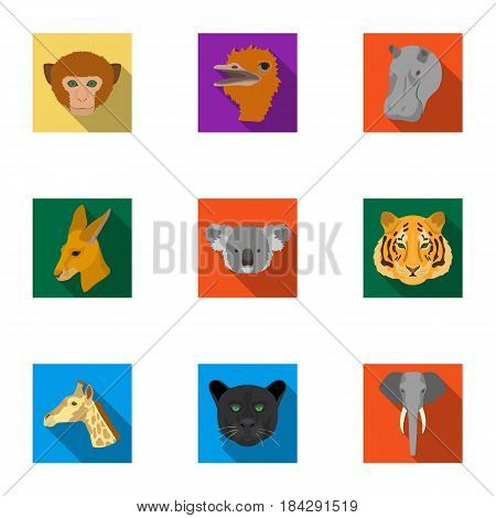 A set of icons of wild animals. Predatory and peaceful wild animals.Realistic animal icon in set collection on flat style vector symbol stock web illustration.