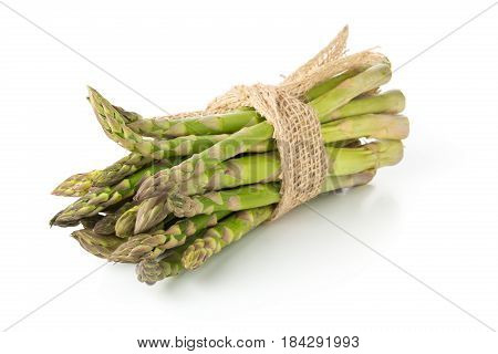 Tied bundle of fresh cut raw uncooked green asparagus vegetable on white background