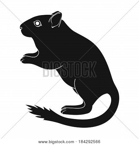 Gray gerbil.Animals single icon in black style vector symbol stock illustration .