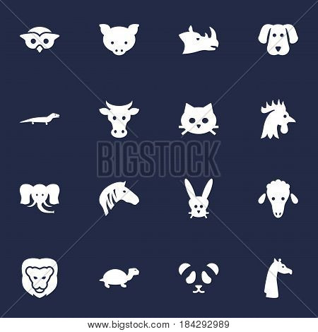 Set Of 16 Brute Icons Set.Collection Of Gecko, Lamb, Wildcat And Other Elements.