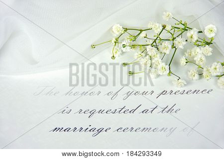 close up of baby's breath and white tulle on wedding invitation