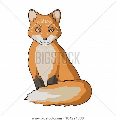 Red fox.Animals single icon in cartoon style vector symbol stock illustration .
