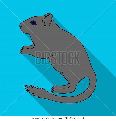 Gray gerbil.Animals single icon in flat style vector symbol stock illustration .