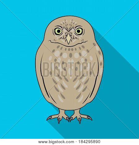 Owl.Animals single icon in flat style vector symbol stock illustration .