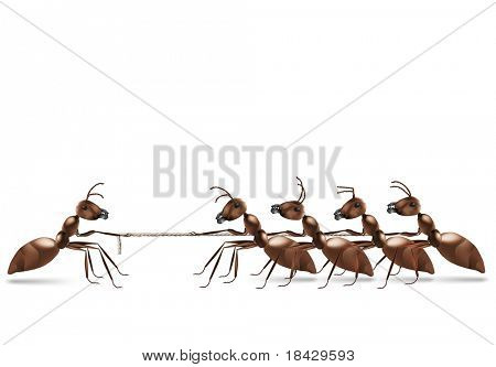 ant rope pulling business advantage or unbalanced fight concept unbalanced conflict out numbered poster