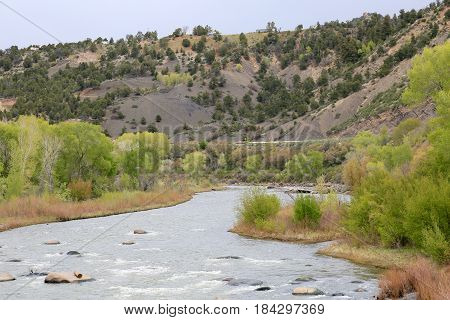 View of Animas River in spring time in Durango, CO