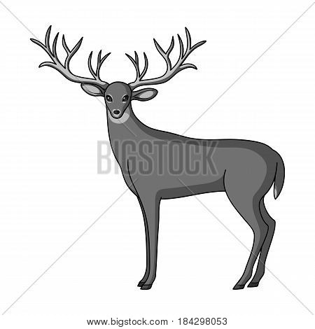 Deer with big horns.Animals single icon in monochrome style vector symbol stock illustration .