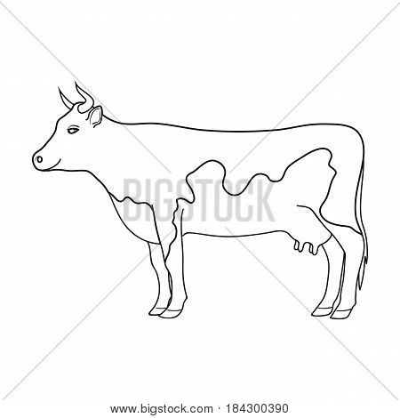Cow.Animals single icon in outline style vector symbol stock illustration .