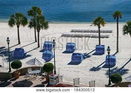 A beach with ocean and palm trees in Florida